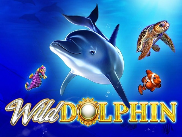 Wild Dolphin Slot